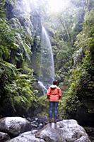 waterfall in los tilos rainforest. la palma. canary islands. spain.