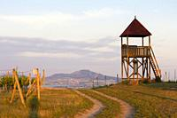 lookout tower Starovicky, Moravia region, Czech Republic.