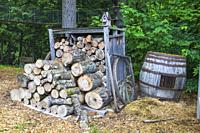 Cut and stacked pile of firewood in storage bin next to oakwood barrel in residential backyard in early summer