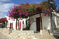 Whitewashed traditional Cyclades houses with colorful doors and windows covered with bougainvilleas in Artemonas village, Sifnos Island, Cyclades Isla...