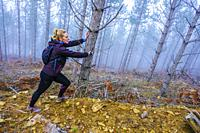 Woman doing sport in a pine forest. Bargota village area. Navarre, Spain, Europe.