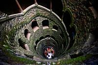 Initiation Well at Quinta da Regaleira, Sintra, Portugal.