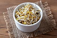 Sprouted fenugreek seeds in a bowl.