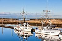 Commercial fishing boats docked in a narrow tidal inlet called Scotch Pond near Steveston British Columbia.