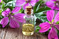 A bottle of common mallow essential oil with fresh blooming malva sylvestris plant.