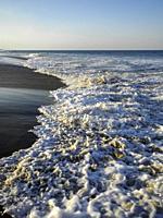 Breaking surf Virginia Beach Virginia.