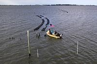Alligator Point, Florida - An oyster farm in Alligator Harbor, off the Florida panhandle in the Gulf of Mexico.