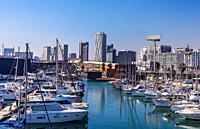 Barcelona City, Diagonal Mar District, The Marina skyline