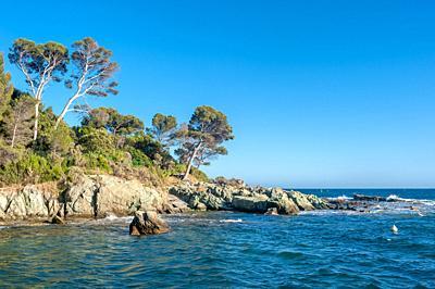 Coastal landscape at Cape Dramont, Saint-Raphael, Var, Provence-Alpes-Cote d`Azur, France, Europe.
