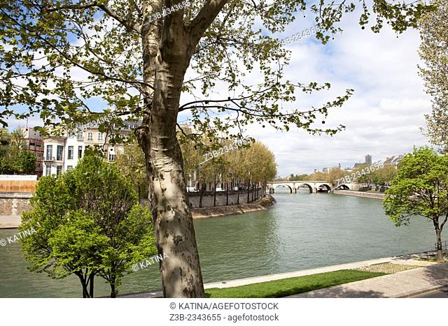 The Seine River and northern riverfront of Ile Saint-Louis, seen from the Right Bank, Paris, France, Europe