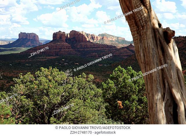 Arizona landscape, Arizona, USA