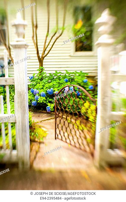 Outdoor living space in a garden setting featuring hydrangeas looking through a gate.Georgia USA