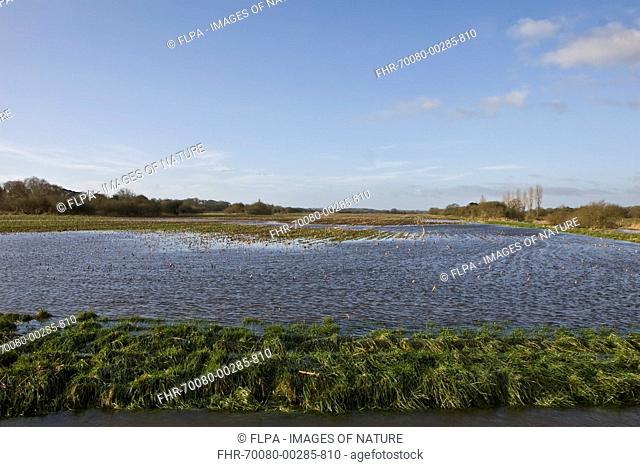 Flooded arable field beside river, River Frome, Tincleton, Dorset, England, January