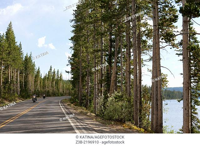 Grand Loop Road through Yellowstone National Park, Wyoming, USA