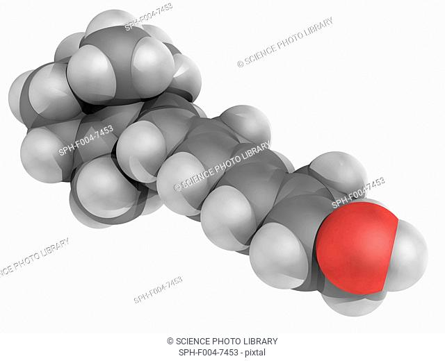 Vitamin A, molecular model. Vitamin that is needed by the retina of the eye. Atoms are represented as spheres and are colour-coded: carbon grey
