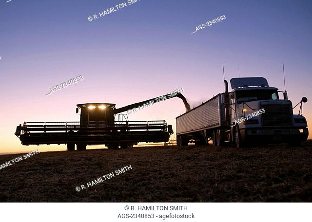 Agriculture - A combine unloads freshly harvested soybeans into a grain truck at sunset / near Northland, Minnesota, USA