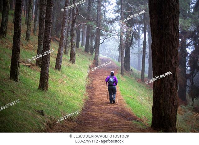 Woman walking on Ruta de los Volcanes trail, La Palma, Canary islands, Spain