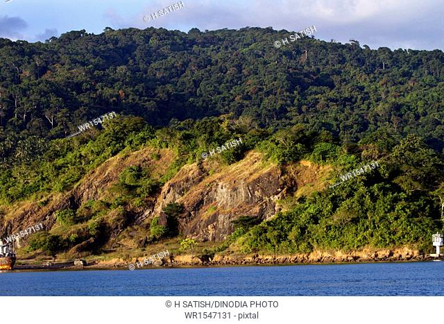 Landscape Deforestation Port blair Andaman islands India Asia