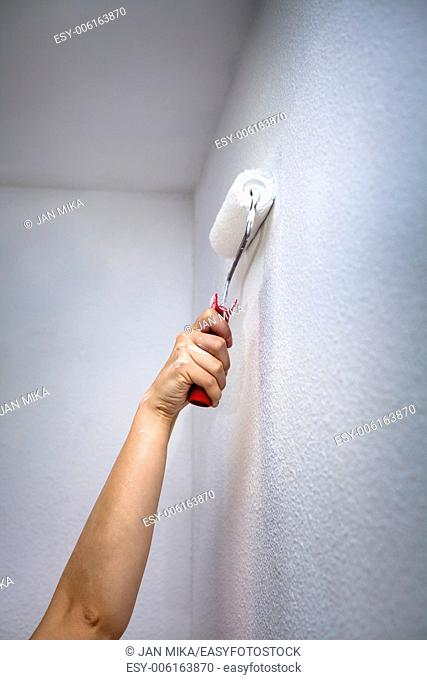 Closeup of female hand painting wall with paint roller