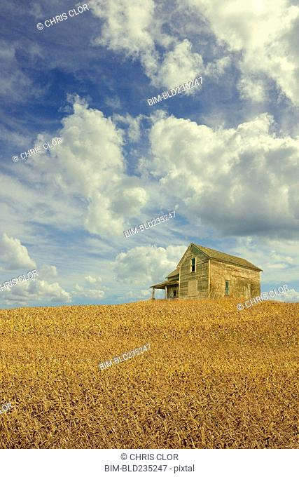 Clouds over remote wooden farmhouse