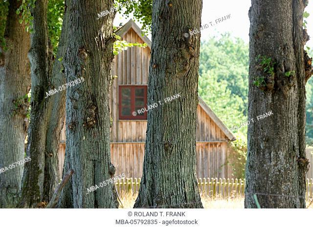 Germany, Mecklenburg-Western Pomerania, Müritz National Park, wooden house close Speck