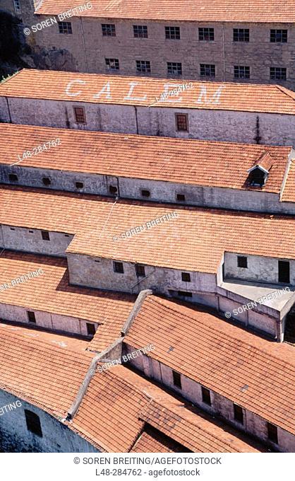 Houses of Port Calem. Oporto. Portugal