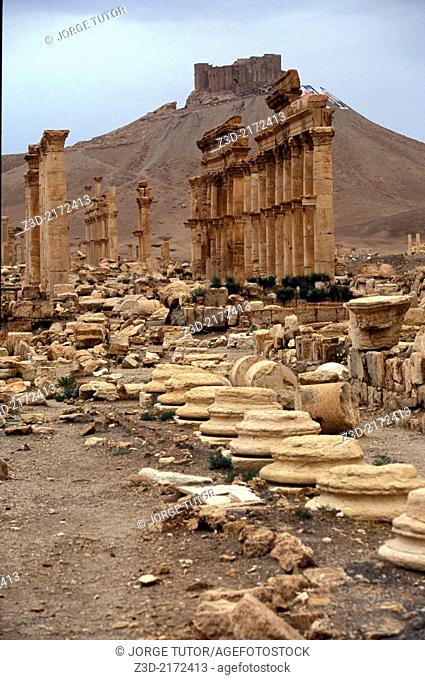 Great Colonnade. Palmyra. Syria
