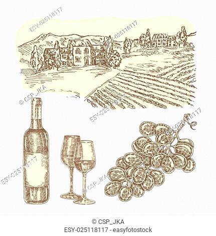 Wine vector set. Hand drawn bottle of wine and vineyard