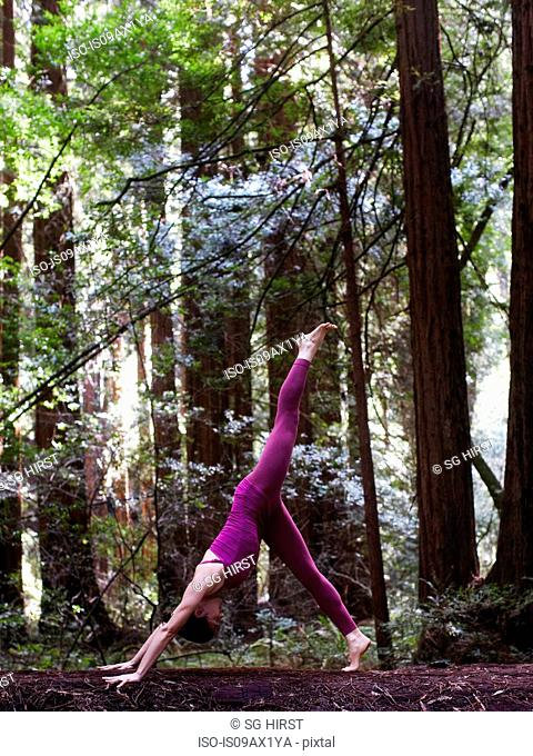 Mid adult woman doing yoga in forest, in down dog split pose