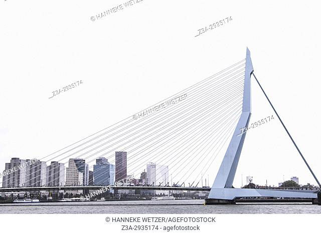 The Erasmus bridge in Rotterdam, the Netherlands, Europe
