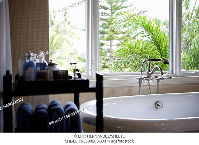 Selective focus modern bathtub near window