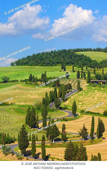 Val d'Orcia  Orcia Valley  Pienza  Road and Cypress trees  Road from pienza to montepulciano  Tuscany Landscape  UNESCO world heritage site  Siena Province...