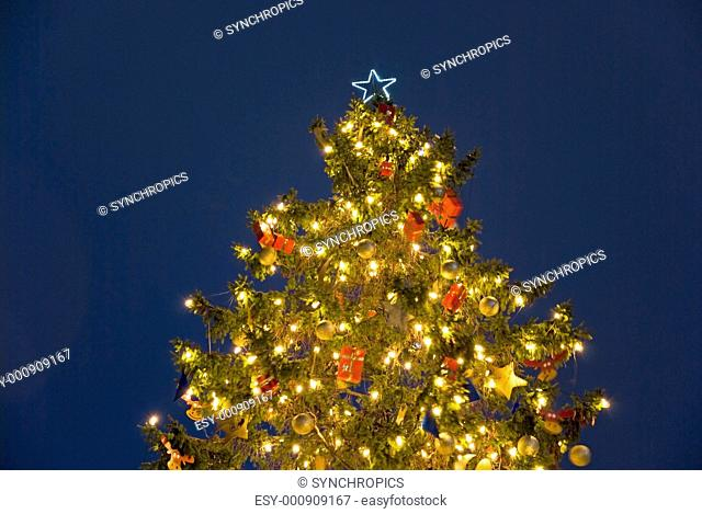 christmas tree in berlin at night