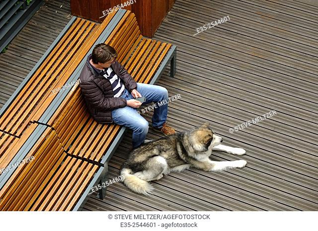 A man and his husky dog wait for friends at a shopping mall