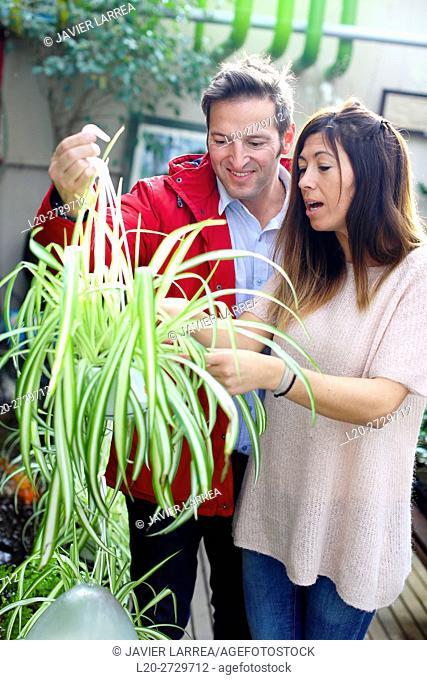 Couple buying plants, garden center