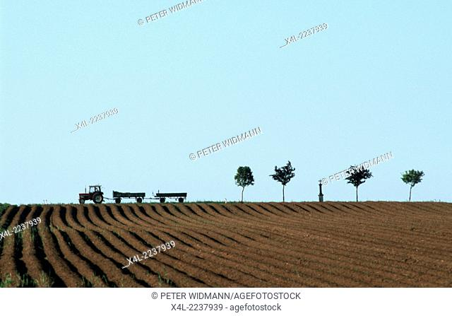 field, traktor, trees, Austria, Lower Austria, Weinviertel, Wartberg