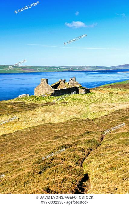 Island of Rousay, Orkney, Scotland. Derelict ruined croft house hill farm near Westness. West over Eynhallow Sound. Path through early summer heather