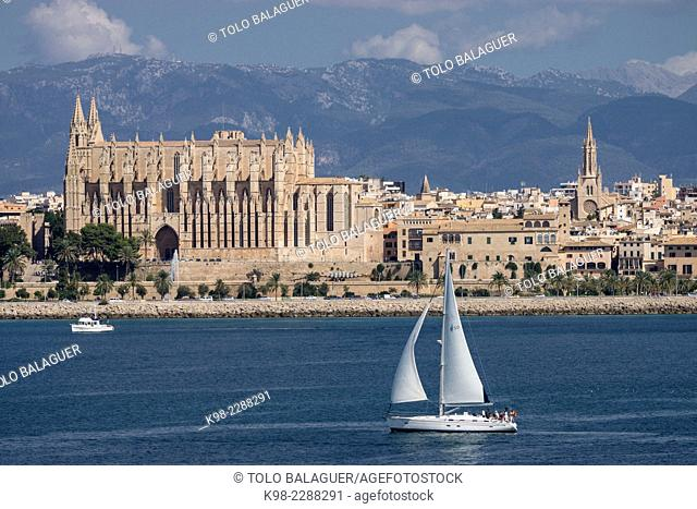 Sailboat, Palma Cathedral, Palma, Majorca, Balearic Islands, Spain