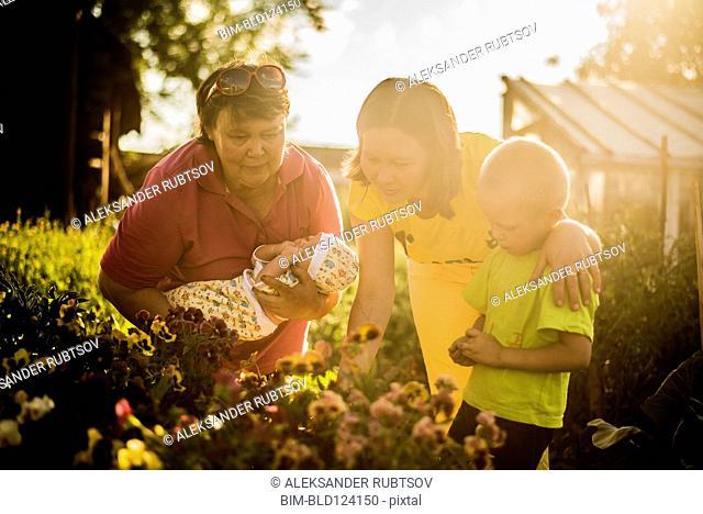 Caucasian family examining flowers in garden