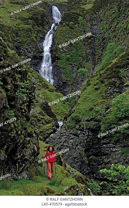 Woman hiking along Souther Upland Way, Grey Mares Tail in background, Dumfriesshire, Scotland, Great Britain