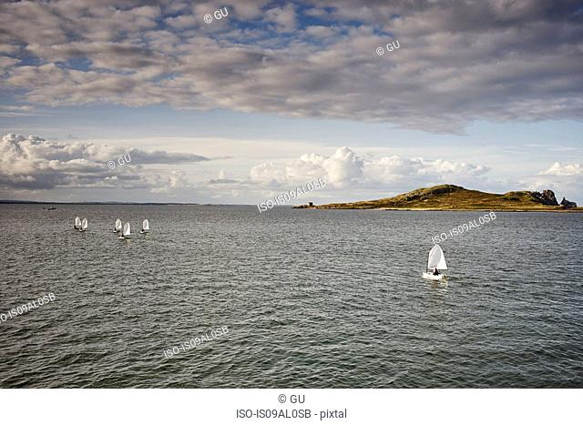 View of Irelands Eye island, Howth, Dublin Bay, Republic of Ireland