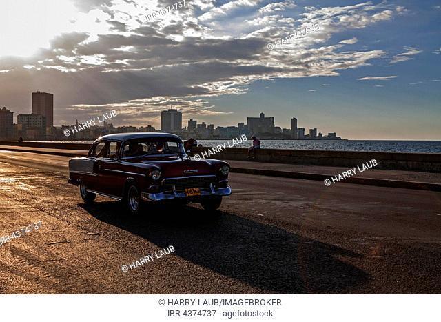 Street scenery, vintage car driving on the Malecon, evening mood, backlight, Havana, Cuba