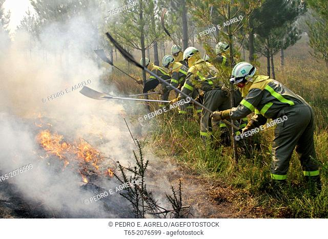 Putting out a forest fire brigades in Palas de Rey Galicia