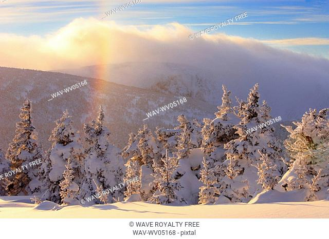 View of snow-covered trees, frost rainbow and Mont Logan at sunset, Quebec, Canada