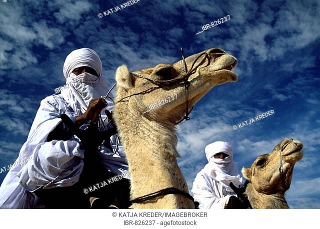Tuareg men riding their camels, Sahara Desert, Libya, North Africa