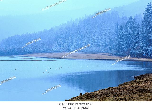 Snow-covered Landscape Pudacuo National Park Shangri La