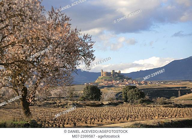 San Vicente de la Sonsierra, Rioja wine region, Spain