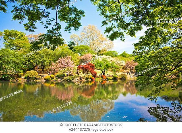 Tokyo City-Shinjuku District-Shinjujku Gyoen Garden