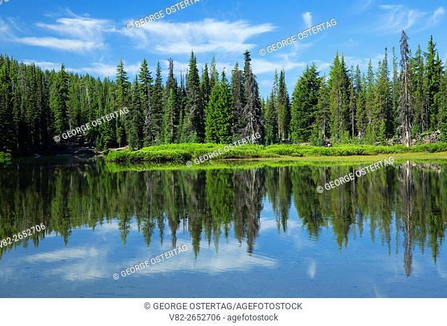 Devils Lake, Cascade Lakes National Scenic Byway, Deschutes National Forest, Oregon