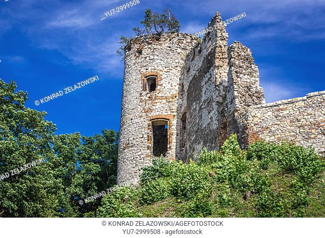 Ruins of Tenczyn Castle in Rudno village on the Trail of the Eagles Nests in Lesser Poland Voivodeship of Poland